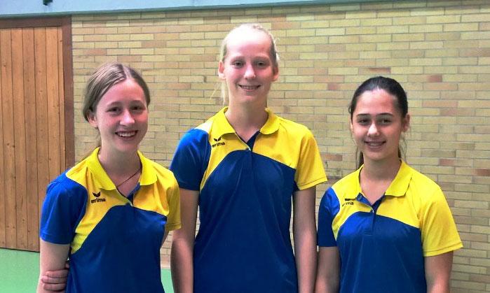 TSG Wolpertshausen Tischtennismannschaften beenden Saison auf den ersten Plätzen in der Kreisliga
